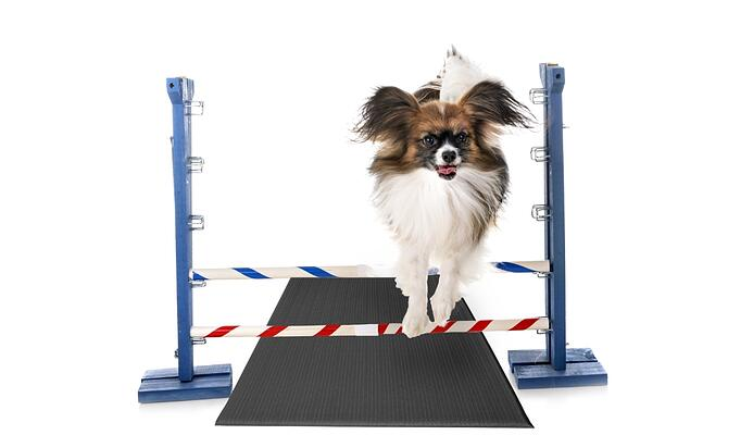 Tuff-Spun® Flyball-product